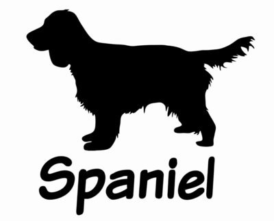 Billabone Spaniel Sticker