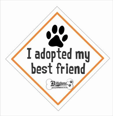 I adopted my best friend Car Sign or Sticker