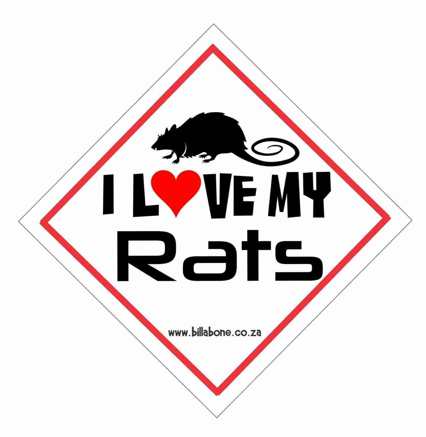 Billabone - I love my Rats On Board Sign or Decal