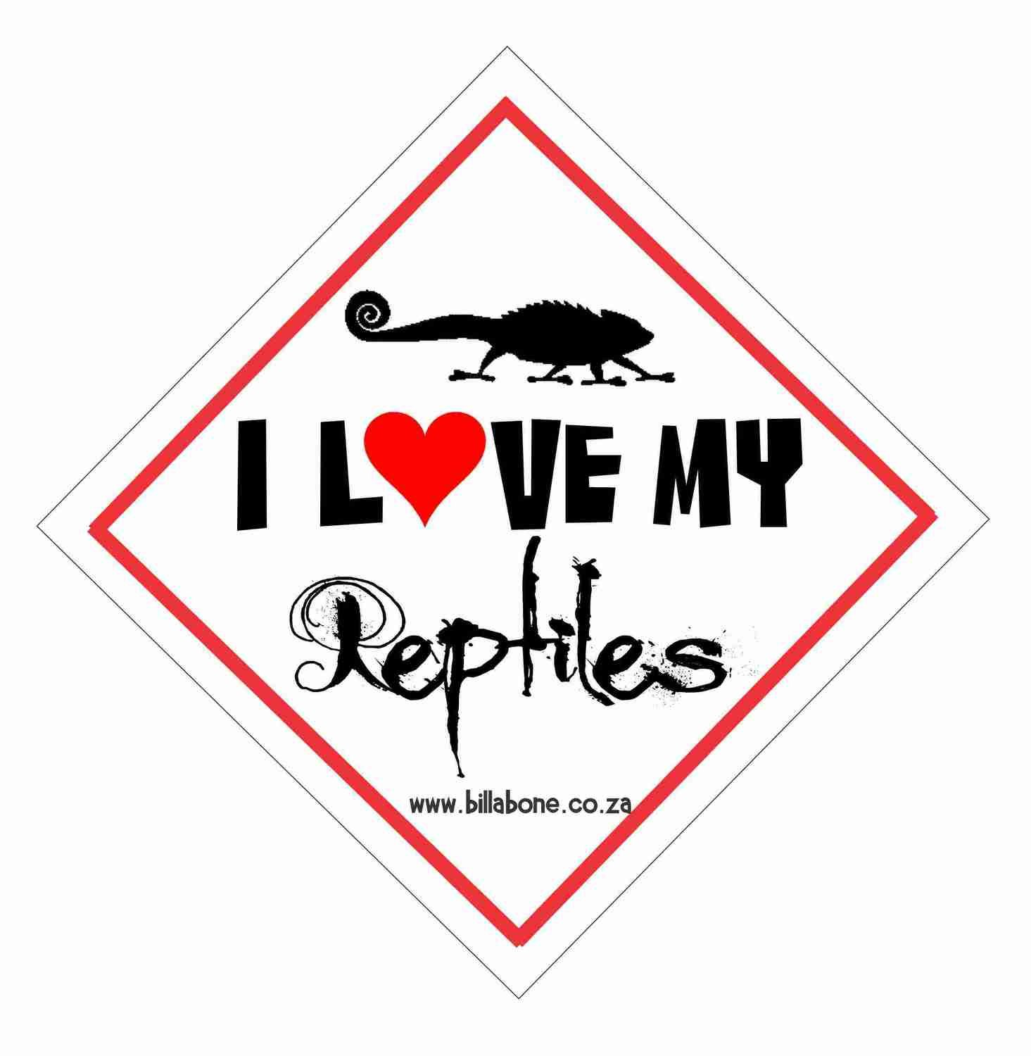 I love my reptiles Car Sign or Sticker