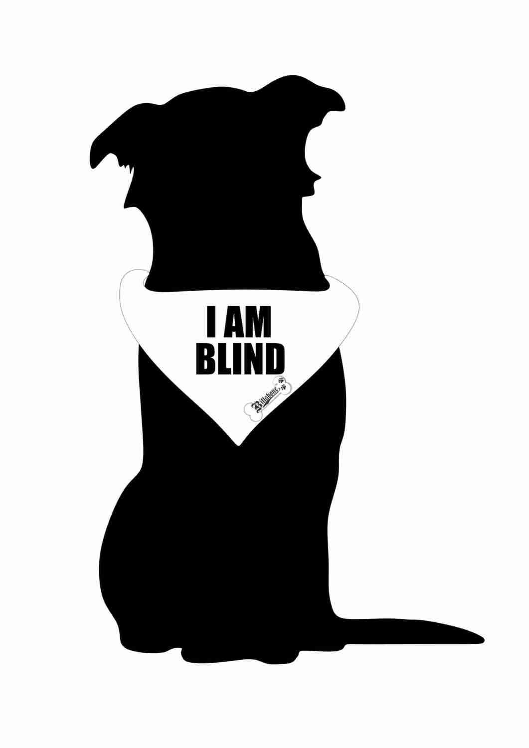 Billabone - I am blind Bandana