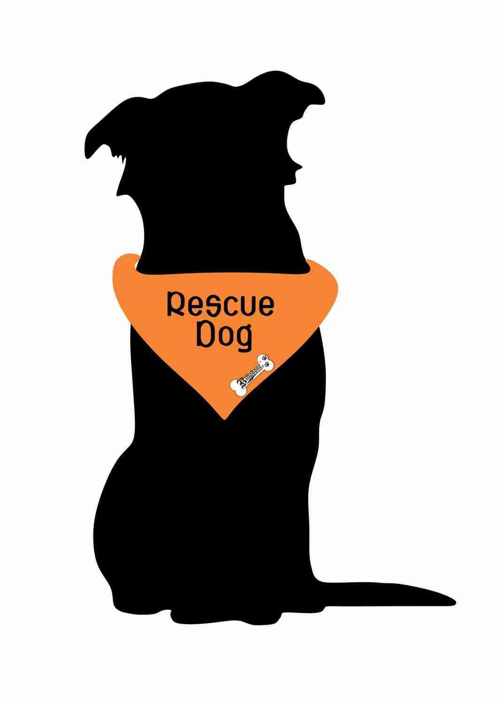 Billabone - Rescue Dog Bandana