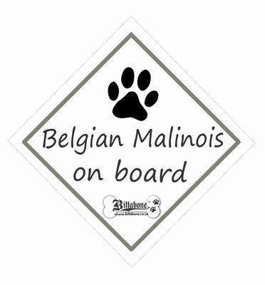 Belgian Malinois On Board Sign or Decal