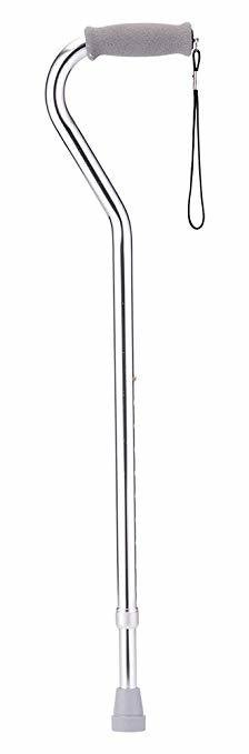 cane-silver