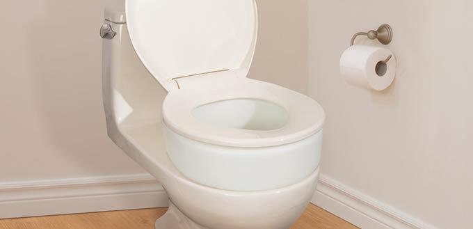 toilet seat elevator/standard