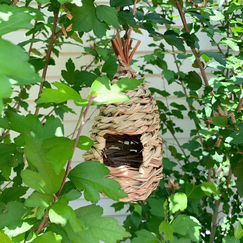 Hummingbird House