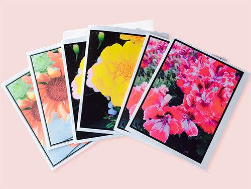 Summer Flower Notecards (Set of 6)
