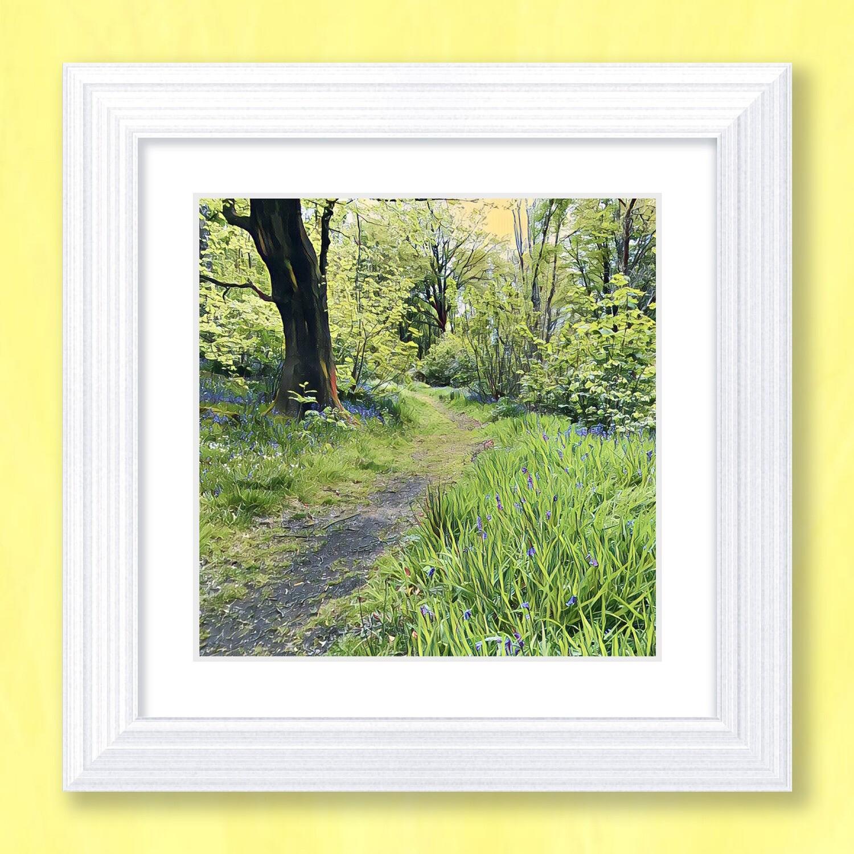 A Woodland Walk Art Print