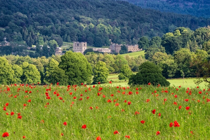 Bubnell Poppy Field and Chatsworth House