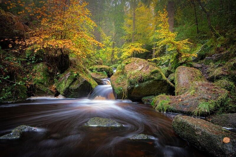 Autumnal Wyming Brook