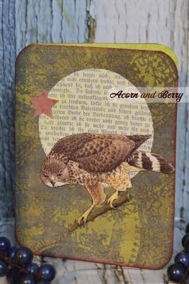 Resplendent Raptors Series: Broad-winged Hawk Notecard