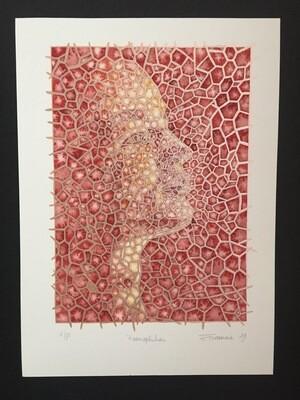 Haemophiliac - Limited Edition Print