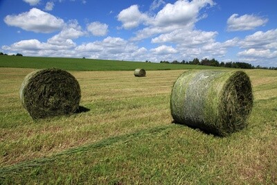 Haylage NutriManager
