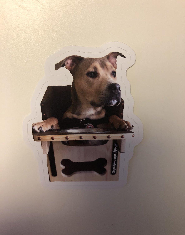 Hungry Hedgie Sticker- Medium
