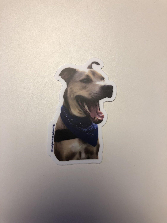 Happy Hedgie Sticker- Small