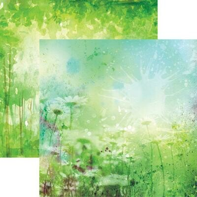 Watercolor Chamomile