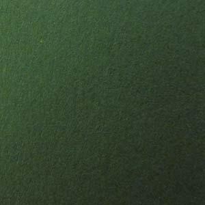 Basis Green Solid