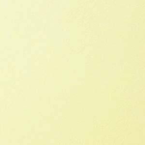 Basis Light Yellow