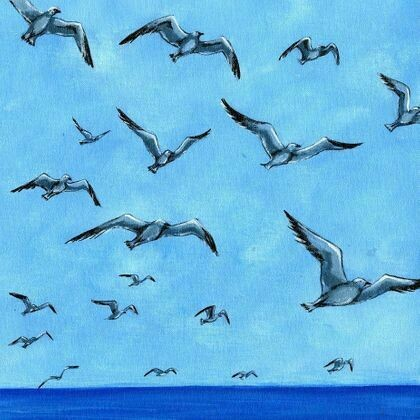 Shore Life in Flight