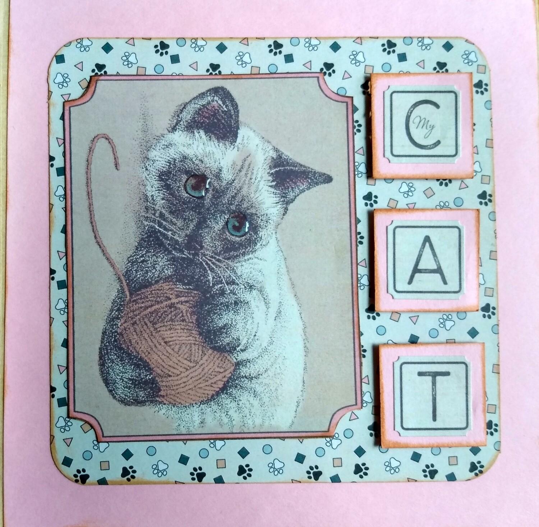 Cat Mini Album
