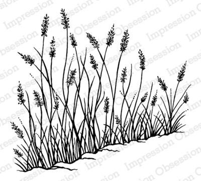 Sea Grass Blooms