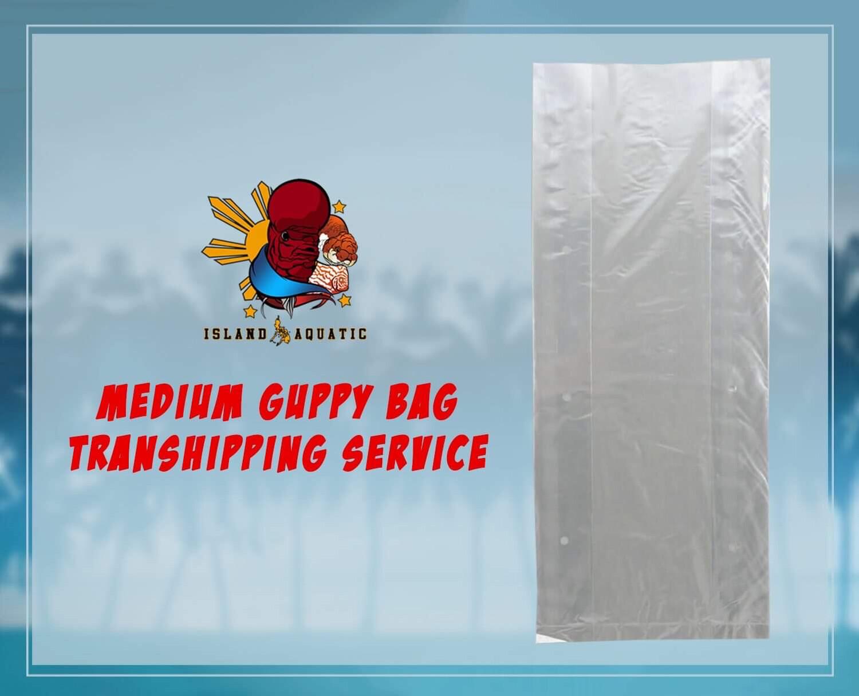GUPPY MEDIUM BAG TRANSHIPPING SERVICE