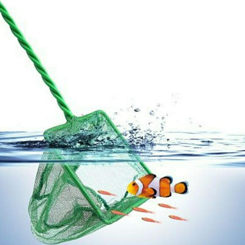 FISH NET 3