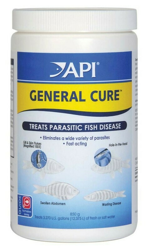 API General Cure Fresh and Saltwater Powder Medication 1ea/850 g