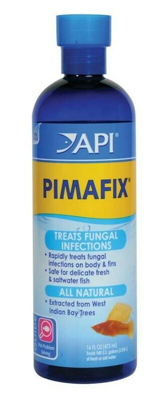 API Pimafix Fresh and Saltwater Fish Remedy 1ea/16 fl oz