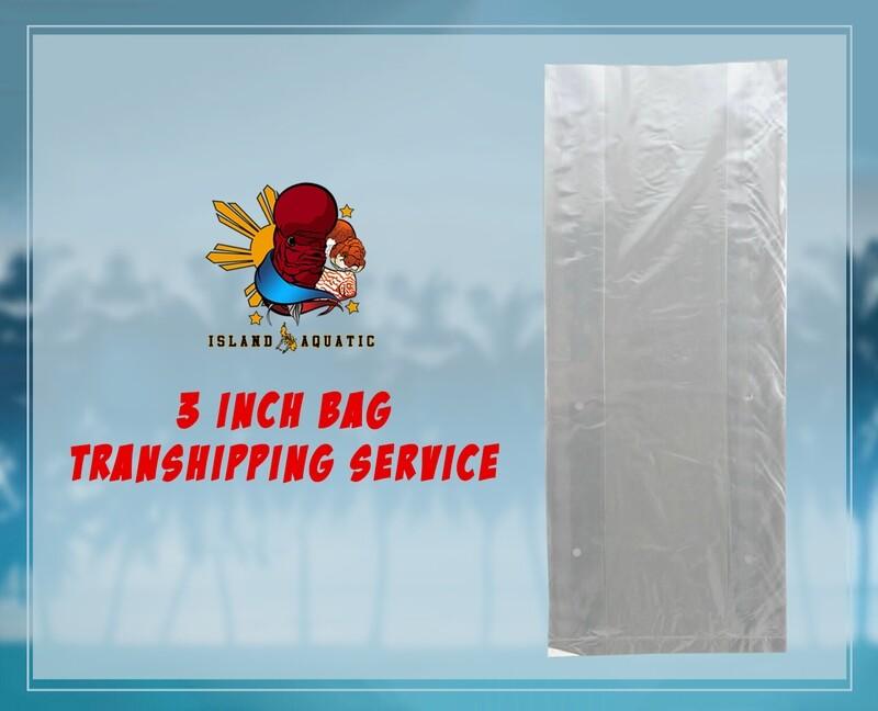 3inch BAG TRANSHIPPING SERVICE