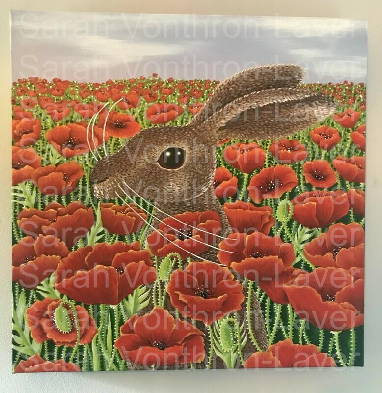 Summer Poppy Hare