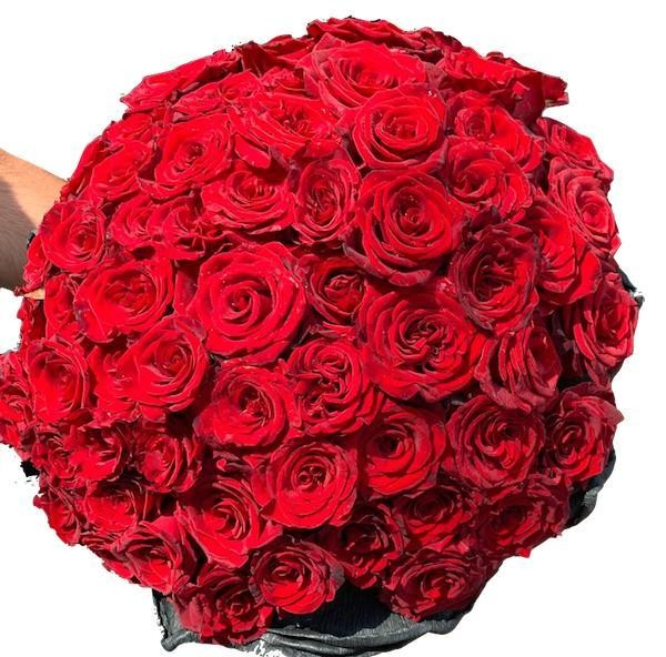 V Red roses Bouquet 25-200