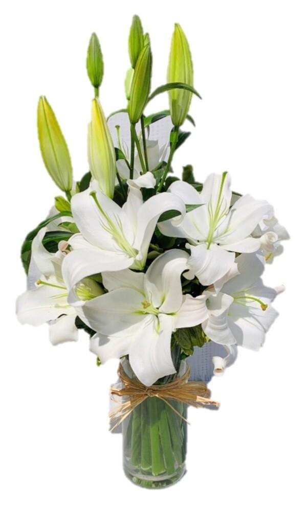 White Lilies (M,L,XL)