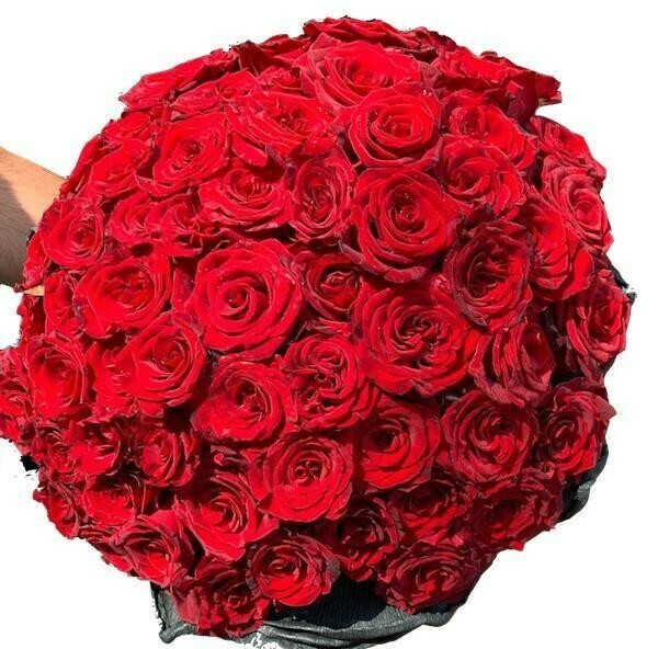 Imported Red roses Bouquet 30-200