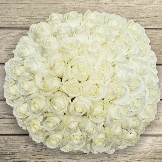 White roses Bouquet 100