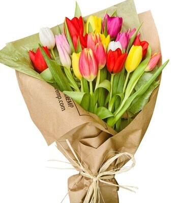 20 Tulip wrap Lebanon