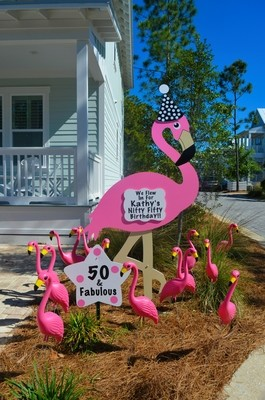 Flamingo Package Rental