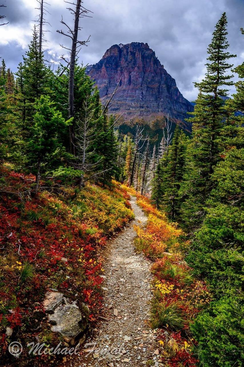 Print - High Path to Lone Wolf
