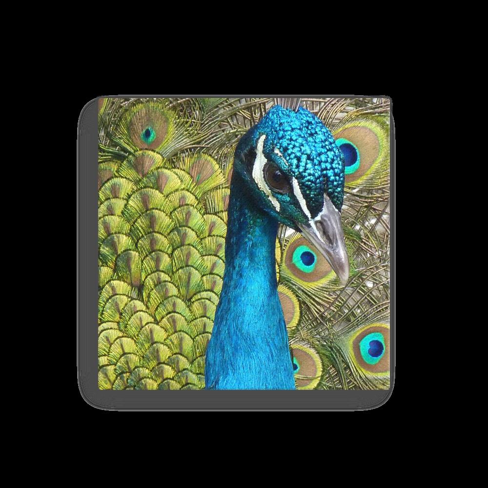 Peacock Bird