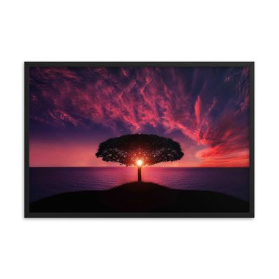 Breathtaking Sunset With Tree