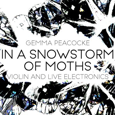 In A Snowstorm of Moths for solo violin and live electronics (hard copy and Max patch)