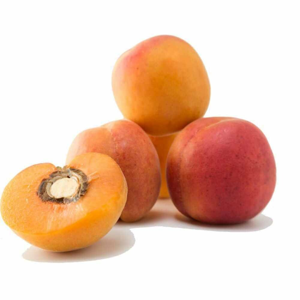 Abrikozen  100 % FRUIT  !