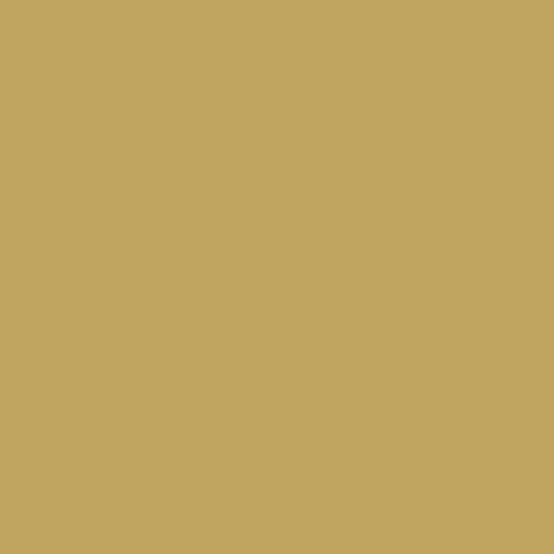 Wandfarbe No. 210 - Olive forte