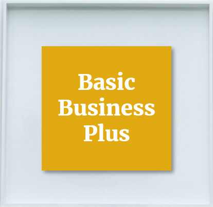 Basic Business Plus