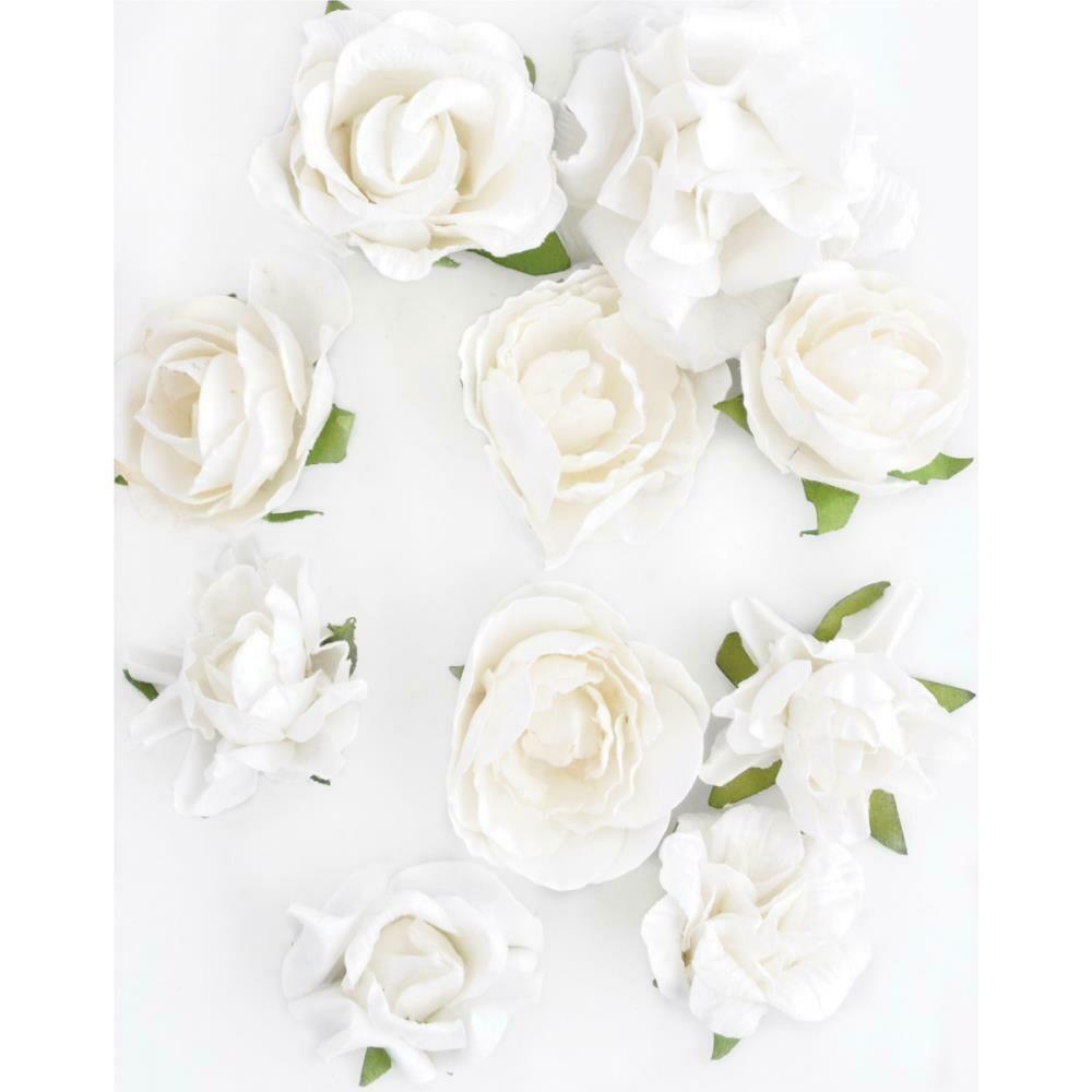 """Kaisercraft Paper Blooms 10/Pkg Coconut, 1""""-1.5"""""""