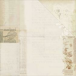 """Vintage Artistry Double-Sided Cardstock 12""""X12"""" Laws Of Nature"""