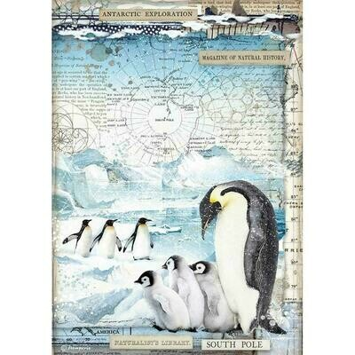 Stamperia Rice Paper Sheet A4 Penguins, Arctic Antarctic