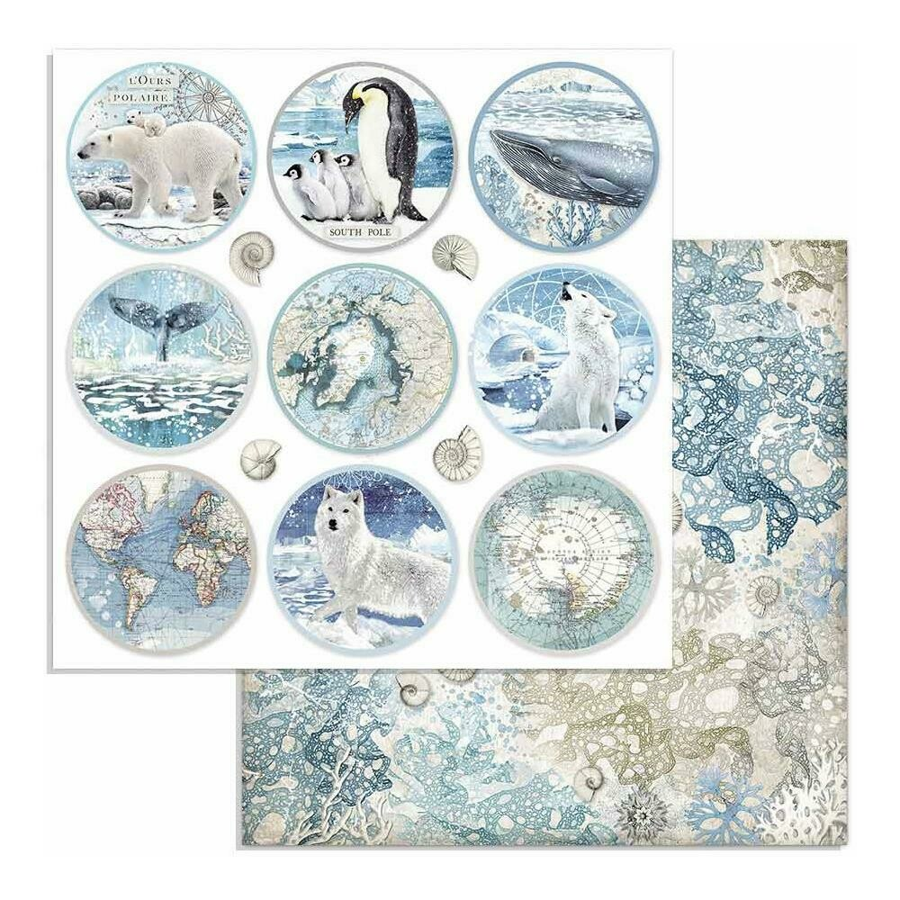 "Stamperia Double-Sided Cardstock 12""X12"" Rounds, Arctic Antarctic"