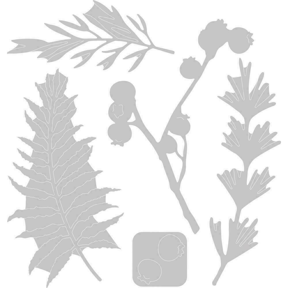 Sizzix Thinlits Dies 5/Pkg Natural Leaves