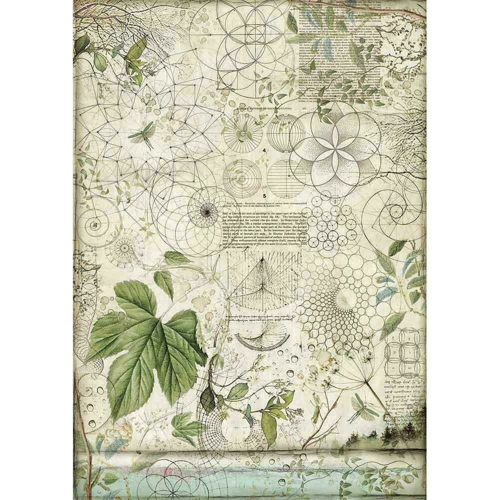 Stamperia Rice Paper Sheet A3 Geometry W/Leaves